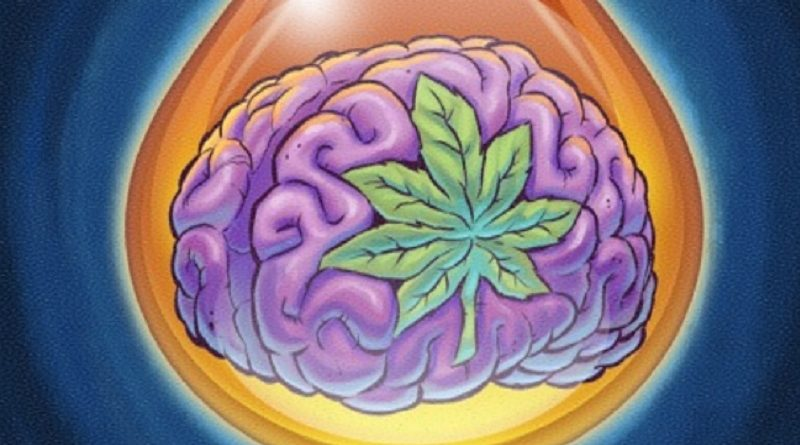CBD Be Used For Treating Dementia