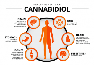 CBD effects