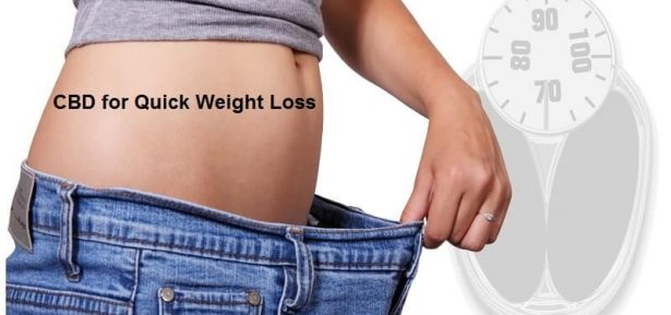 CBD for Quick Weight Loss