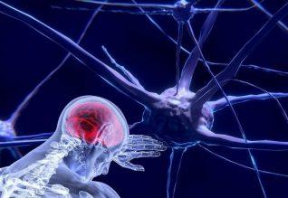 CBD for brain healing